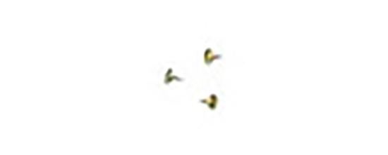 10 Chinchetas de Titanio de 3 mm. de largo